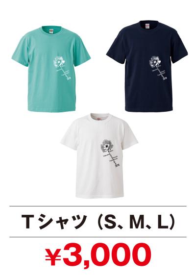 Tシャツ(白、ライトグリーン、紺):3,000円